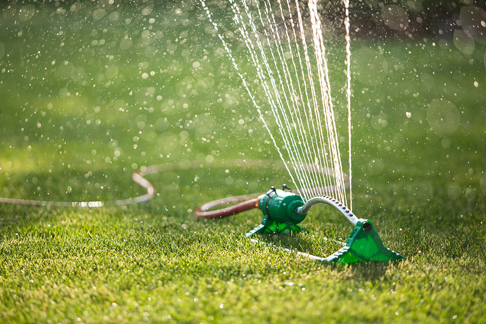 Watering Your Lawn Clark 39 S